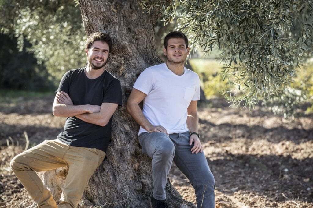 Panos and Thanos Kloutsiniotis in the olive groves that are dear to them. Ladolea